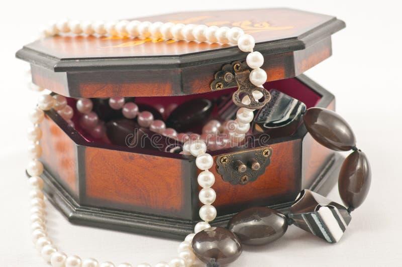 halsband för askörhängesmycken royaltyfri bild