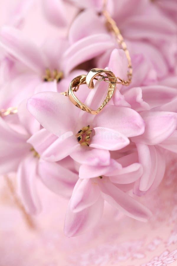 halsband för guldhjärtahyacint royaltyfria foton