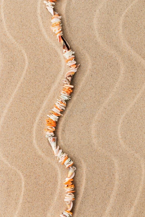 Halsband som göras från snäckskal, ligger på sanden bland dyerna arkivbilder