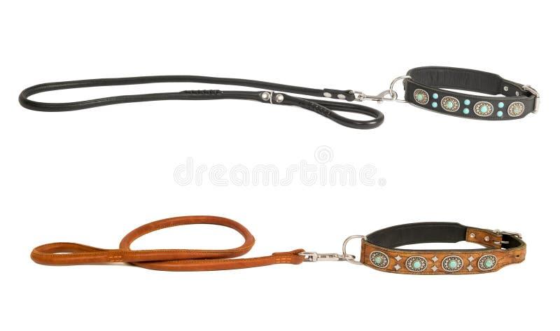 Halsband twee met leiband royalty-vrije stock afbeeldingen