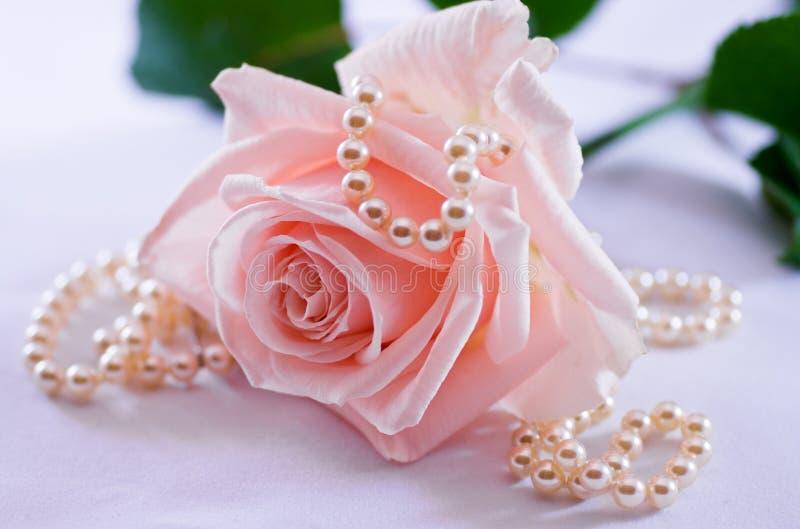 Halsband van de parel en zachte roze namen toe royalty-vrije stock afbeelding