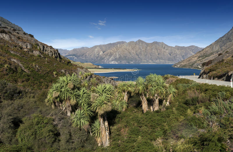 Halsen, synvinkel av sjön Wanaka och sjön Hawea, Nya Zeeland på deras mest nära punkt fotografering för bildbyråer