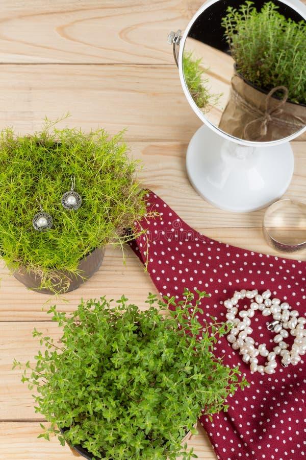 Halskette, Ohrringe mit Perlen, Kleid, Spiegel und Reflexion mit Gras/Anlage auf Holztisch stockbild