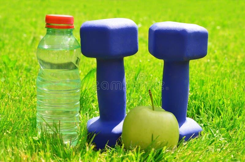 Haltères avec la pomme et bouteille avec de l'eau dans l'herbe image stock