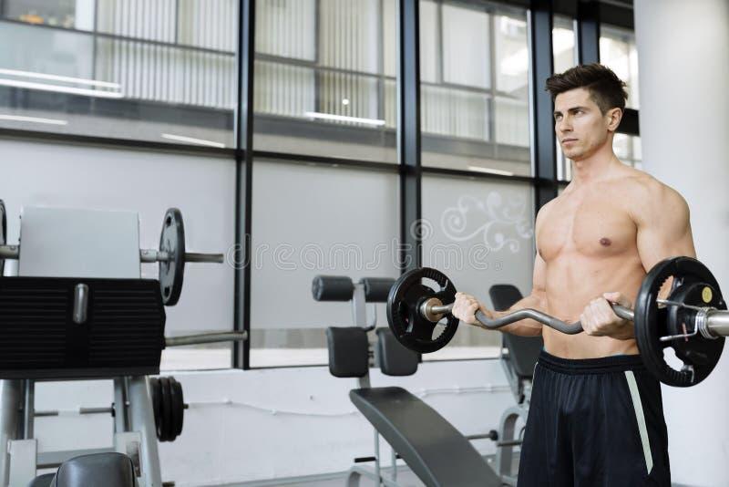 Halterofilismo muscular do homem no gym imagem de stock royalty free