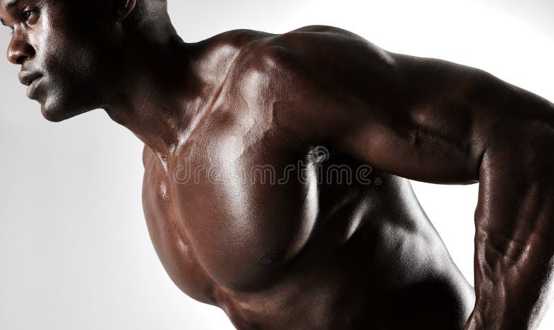 Halterofilista com físico muscular imagens de stock
