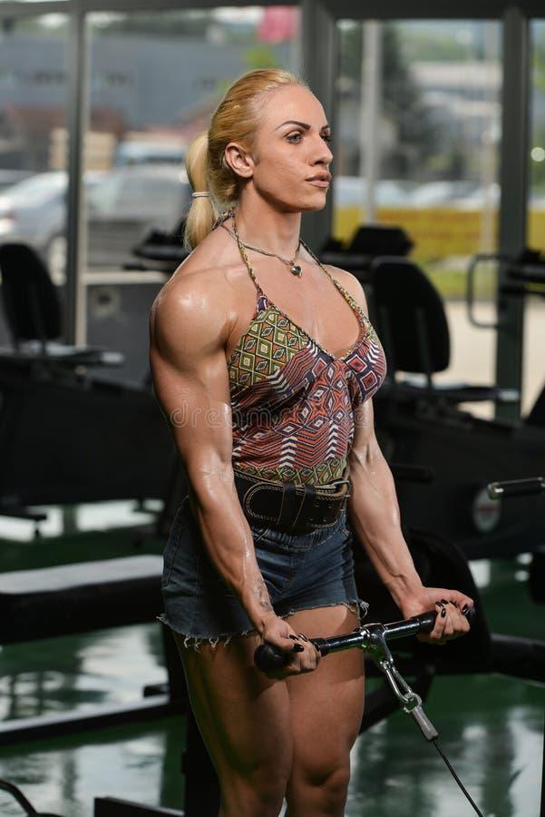 Halterofilista da mulher que exercita o bíceps imagens de stock