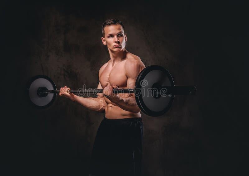 Halterofilista descamisado novo que guarda um barbell e que faz o exercício no bíceps Isolado no fundo escuro fotos de stock
