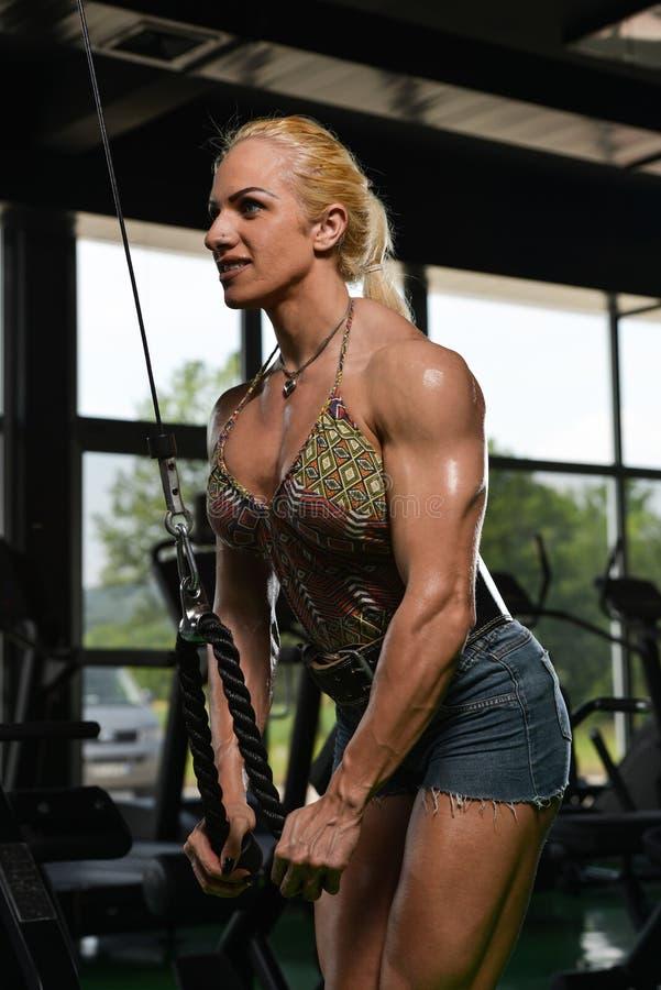 Halterofilista fêmea que faz o exercício pesado para o tríceps imagem de stock