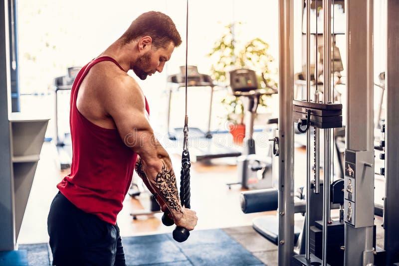Halterofilista muscular considerável da aptidão que faz o exercício pesado para o tríceps foto de stock