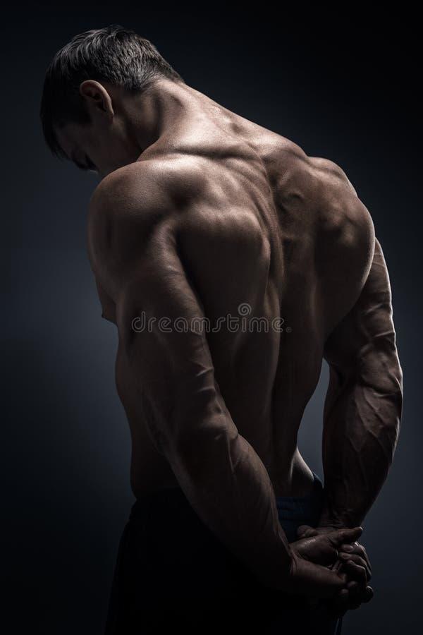 Halterofilista muscular considerável girado para trás fotos de stock