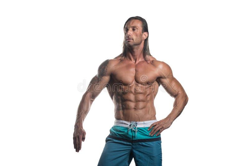 Halterofilista muscular Guy Posing Over White Background imagem de stock royalty free