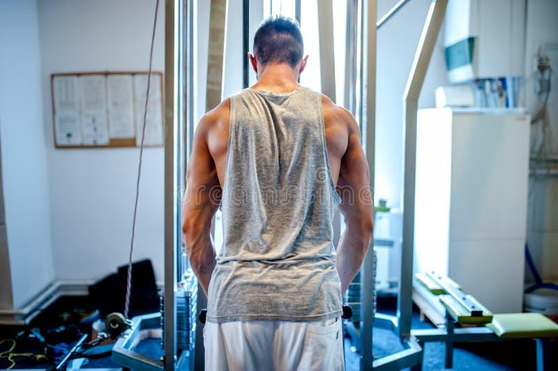 Halterofilista muscular que dá certo no gym, fazendo o tríceps imagem de stock royalty free