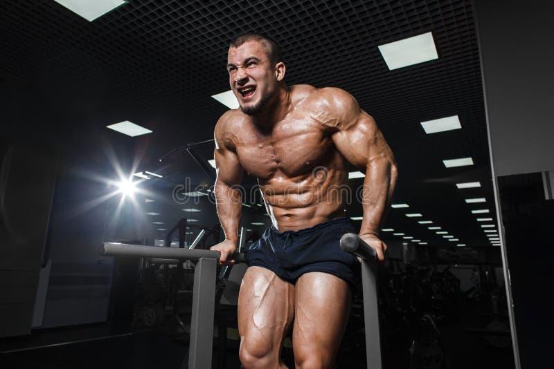 Halterofilista muscular que dá certo no gym que faz exercícios no barsl paralelo fotografia de stock royalty free