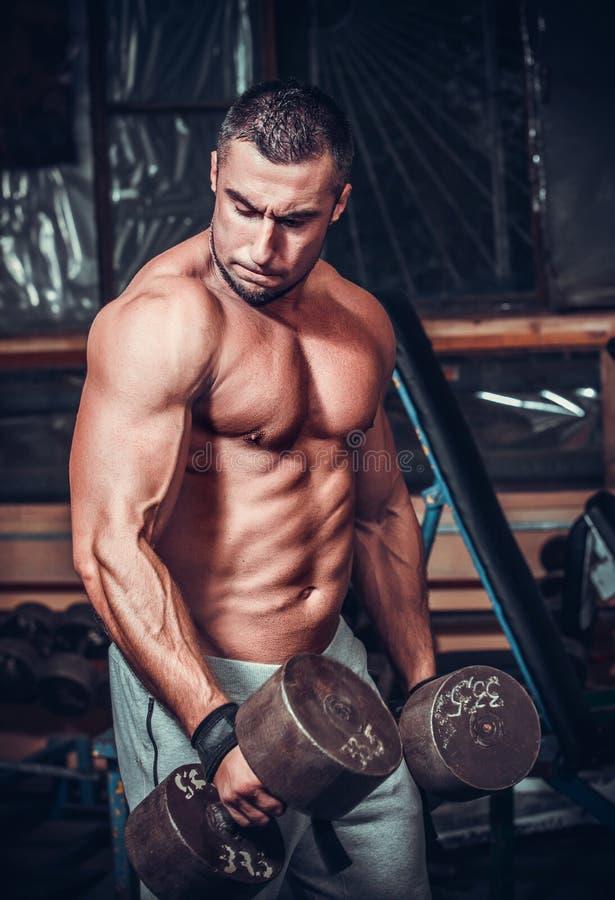 Halterofilista muscular que faz exercícios com pesos fotos de stock royalty free
