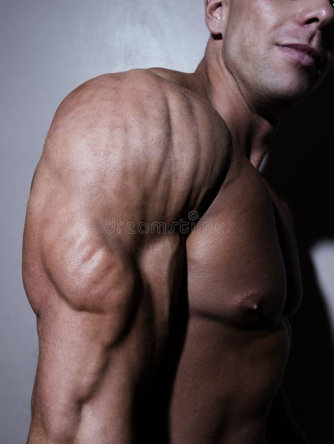 Halterofilista novo muscular considerável que mostra o seu fotos de stock