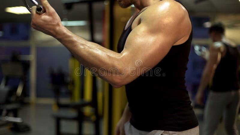 Halterofilista que dá certo no clube de esporte, fazendo o exercício suspenso do peso, atividade imagens de stock