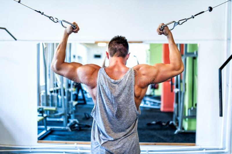 Halterofilista que dá certo o bíceps no gym Conceito dos esportes fotos de stock