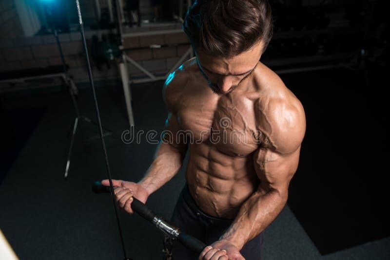 Halterofilista que exercita o bíceps foto de stock royalty free