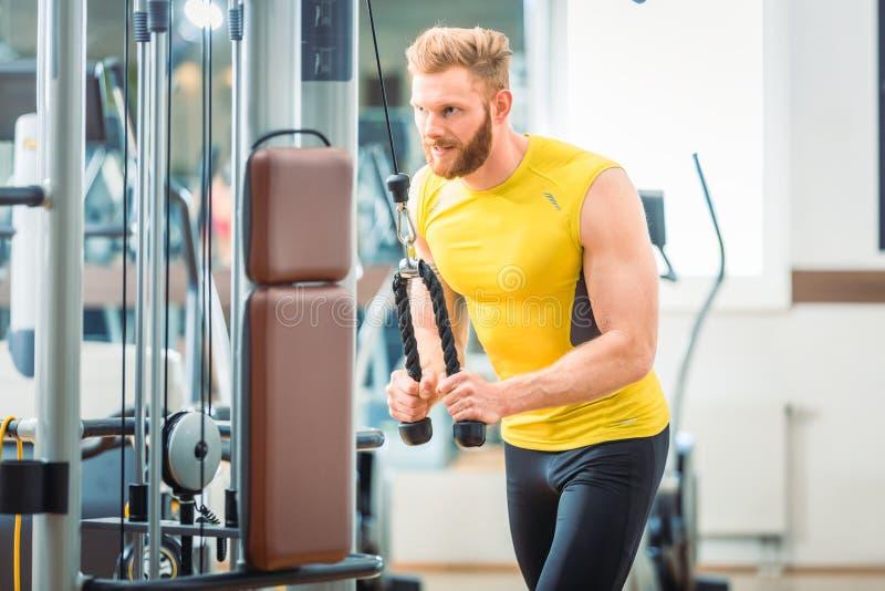 Halterofilista que exercita o pushdown do tríceps na máquina do cabo da corda fotos de stock