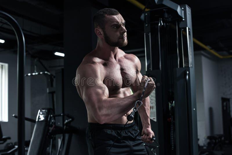 Halterofilista que faz o exercício do bíceps com máquina do peso fotos de stock