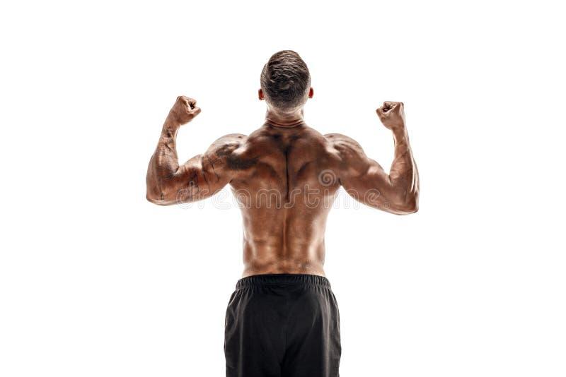 Halterofilista que mostra seus músculos isolados em um fundo branco, instrutor pessoal da parte traseira e do bíceps da aptidão foto de stock