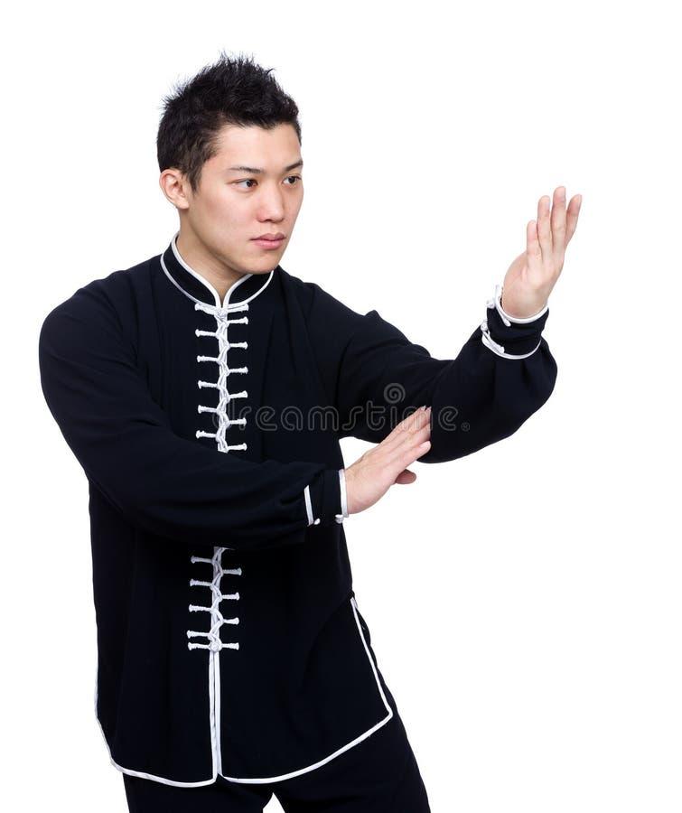 Haltung der Verteidigung im chinesischen Kung-Fu lizenzfreie stockbilder