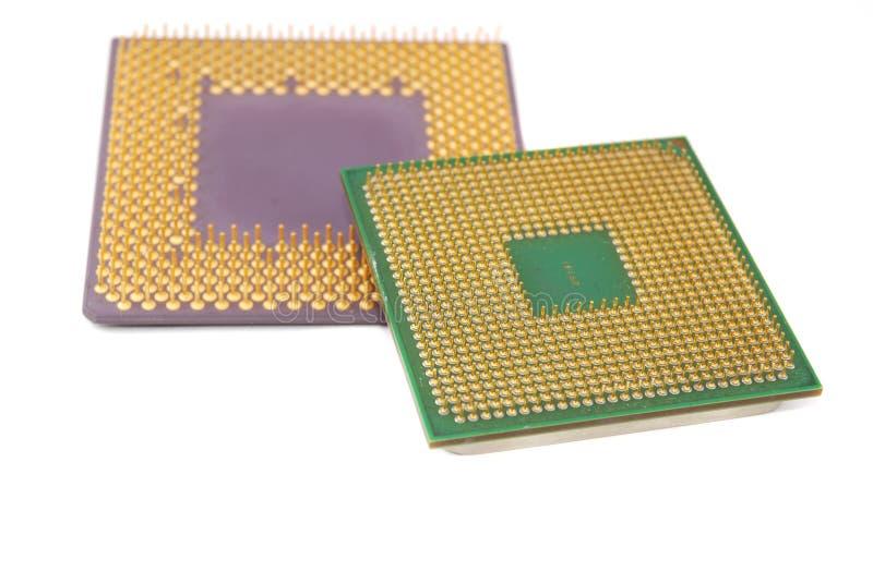 halv ledareprocessor arkivfoto