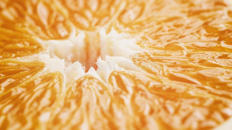 Halva av den mogna orange closeupen royaltyfria bilder