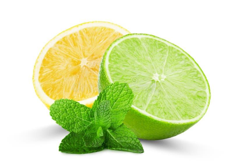 Halva av limefrukt och citronen med mintkaramellsidor som isoleras på de vita lodisarna royaltyfri fotografi