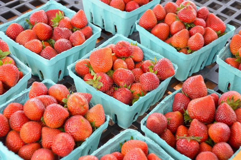 Halva liter av jordgubbar royaltyfria foton