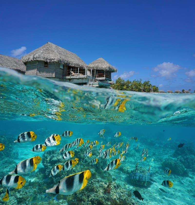 Halva och halv tropisk bungalow och skola av fisken royaltyfri foto
