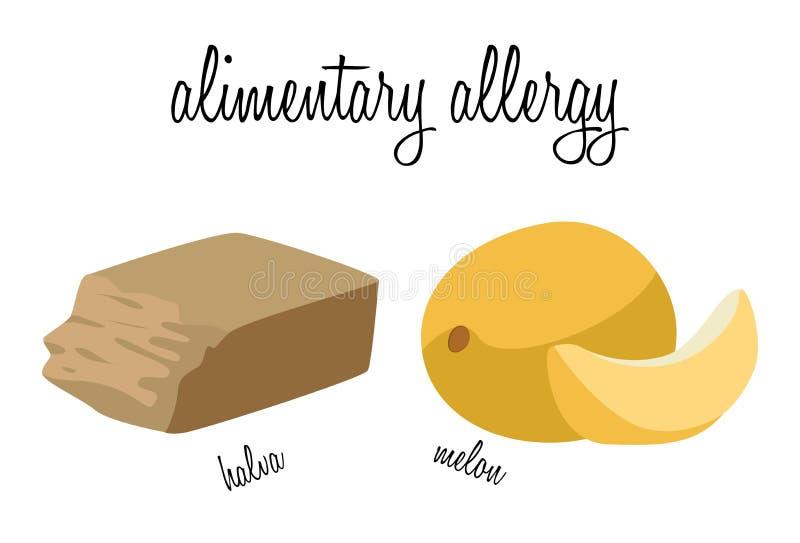 Halva y melón - comidas que causan las alergias alimentarias stock de ilustración