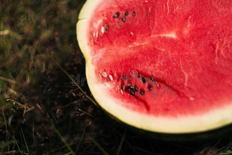 Halvan av den klippta vattenmelon ligger på gräsnärbilden royaltyfri bild
