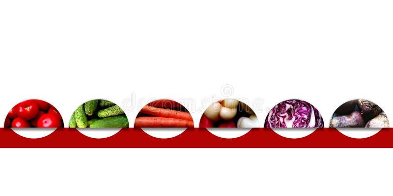 Halvcirklar med organiska grönsaker royaltyfri illustrationer