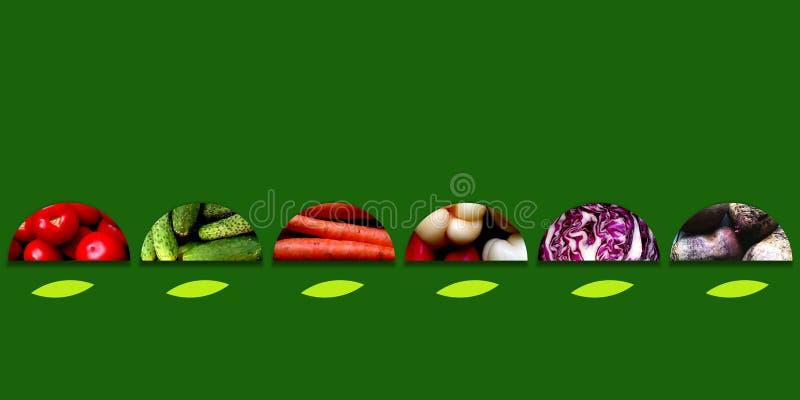 Halvcirklar mycket av nya grönsaker på mörker - grön bakgrund stock illustrationer