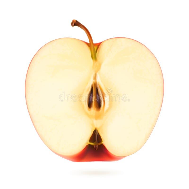 Halve appel, vectorillustratie royalty-vrije illustratie