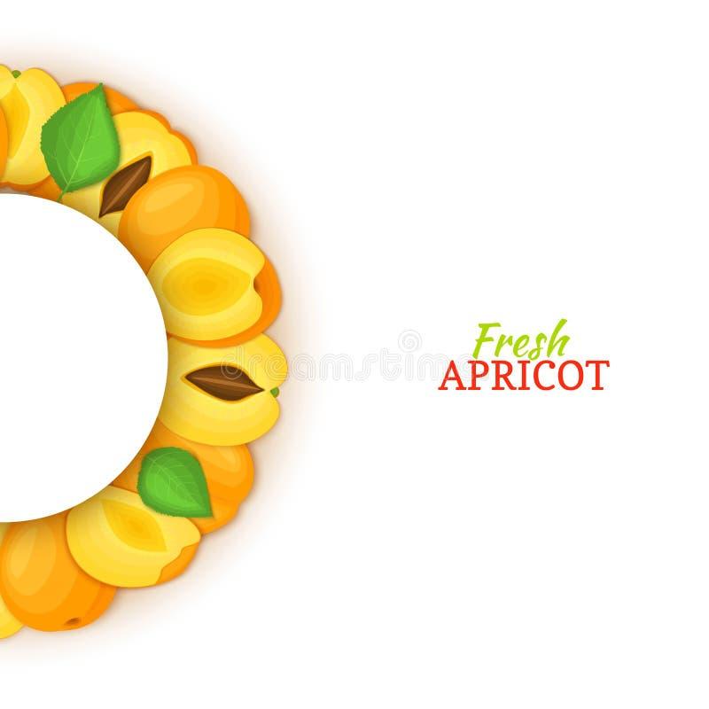 Halve cirkel gekleurd die kader uit heerlijk abrikozenfruit wordt samengesteld Vectorkaartillustratie Vers abrikozen half-round w stock illustratie