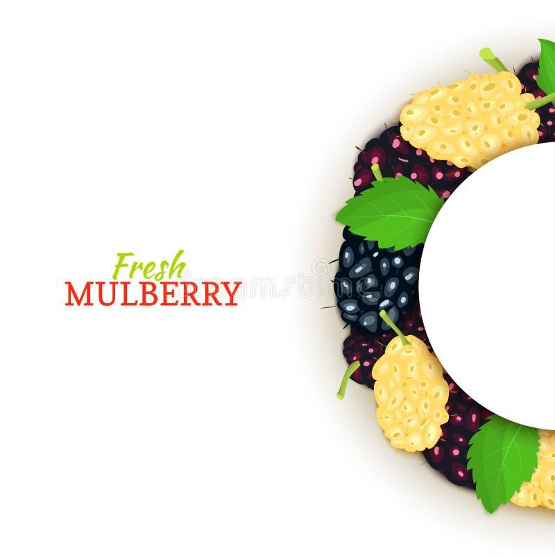 Halve cirkel gekleurd die kader uit heerlijk moerbeiboomfruit wordt samengesteld Vectorkaartillustratie Half-round Mulberrytbes royalty-vrije illustratie