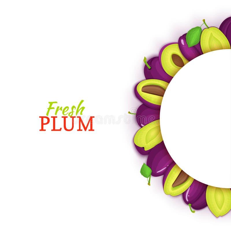 Halve cirkel gekleurd die kader uit heerlijk pruimfruit wordt samengesteld Vectorkaartillustratie Vers pruimen half-round wit kad stock illustratie