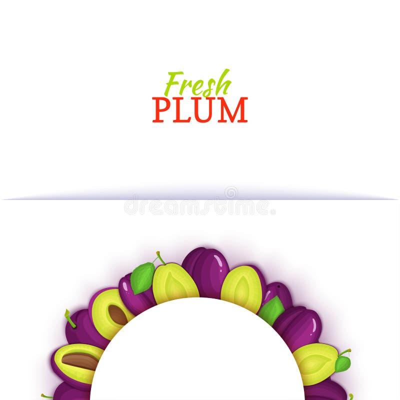 Halve cirkel gekleurd die kader uit heerlijk pruimfruit wordt samengesteld Vectorkaartillustratie Vers pruimen half-round wit kad vector illustratie