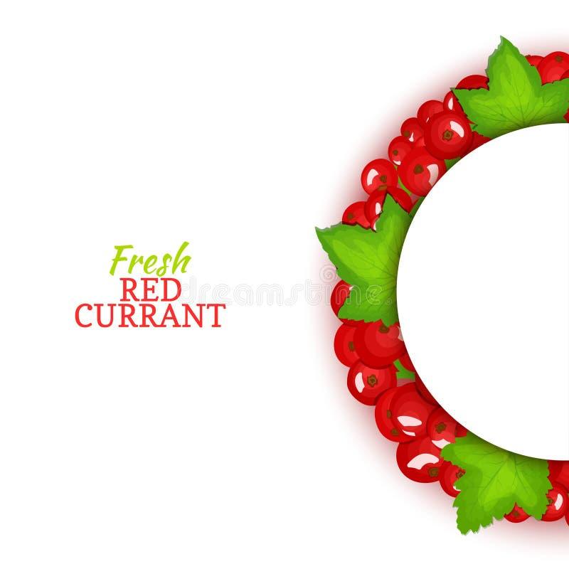 Halve cirkel gekleurd die kader uit heerlijk rode aalbesfruit wordt samengesteld Vectorkaartillustratie Half-round rode aalbesbes stock illustratie