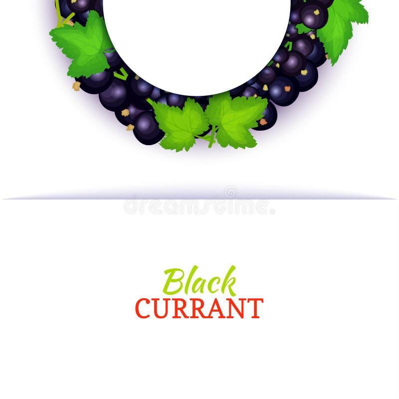 Halve cirkel gekleurd die kader uit heerlijk zwarte besfruit wordt samengesteld Vectorkaartillustratie Blauwe halve besbes royalty-vrije illustratie