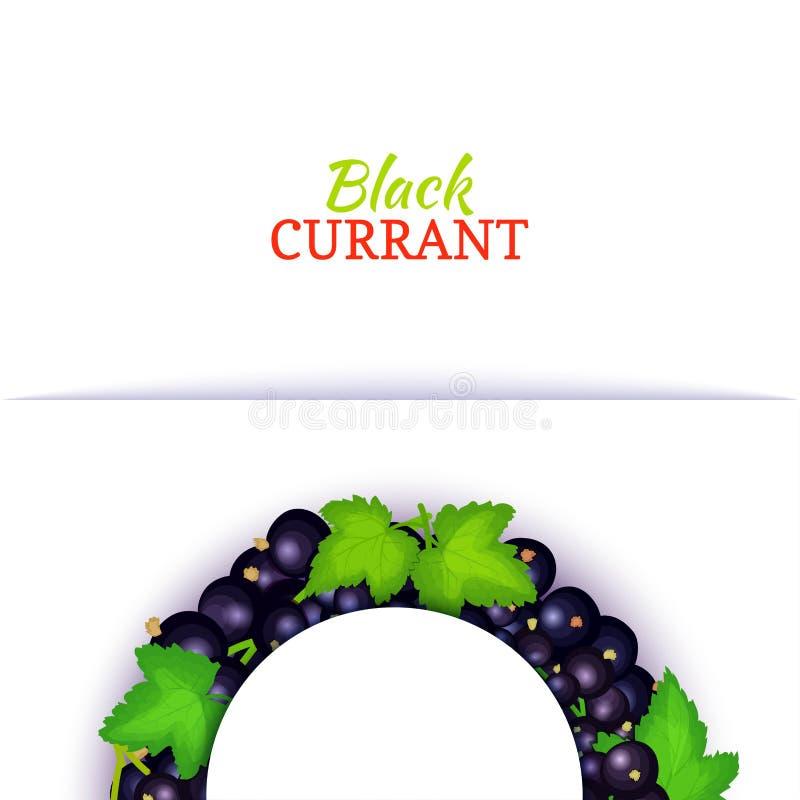 Halve cirkel gekleurd die kader uit heerlijk zwarte besfruit wordt samengesteld Vectorkaartillustratie Blauwe halve besbes stock illustratie
