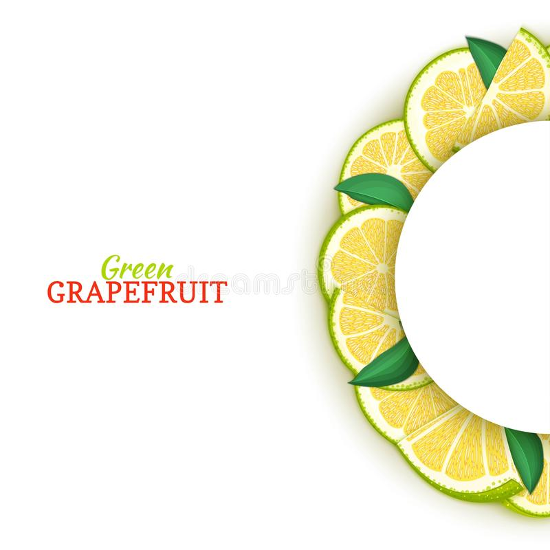 Halve cirkel wit die kader uit heerlijke tropische groene grapefruit wordt samengesteld Vectorkaartillustratie Halve pompelmoesci royalty-vrije illustratie
