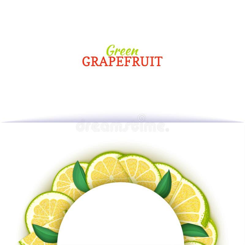Halve cirkel wit die kader uit heerlijke tropische groene grapefruit wordt samengesteld Vectorkaartillustratie Halve pompelmoesci vector illustratie