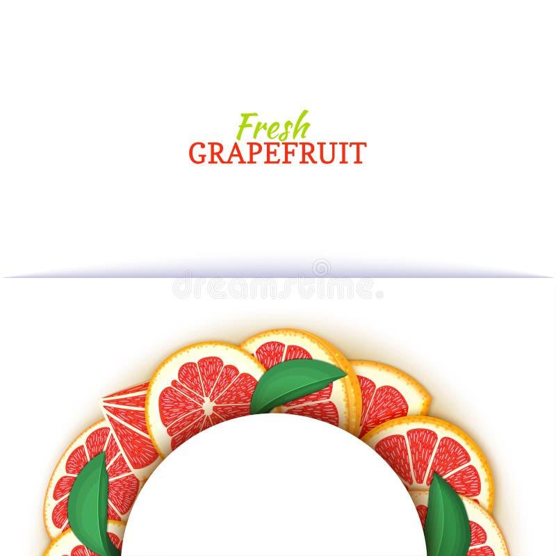 Halve cirkel wit die kader uit heerlijke tropische rode grapefruit wordt samengesteld Vectorkaartillustratie Half-round pompelmoe vector illustratie