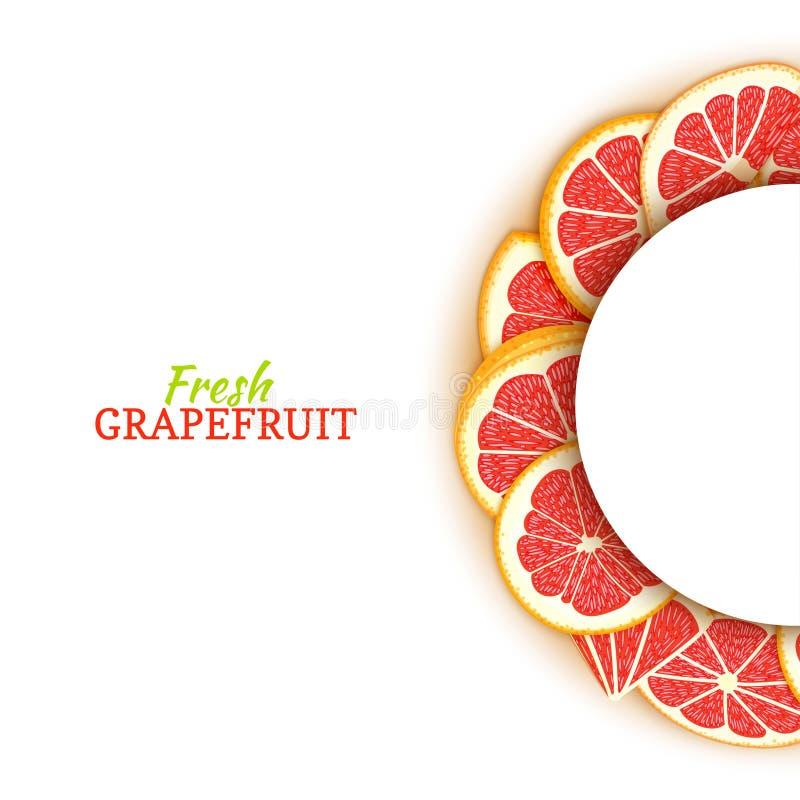Halve cirkel wit die kader uit heerlijke tropische rode grapefruit wordt samengesteld Vectorkaartillustratie Half-round pompelmoe stock illustratie