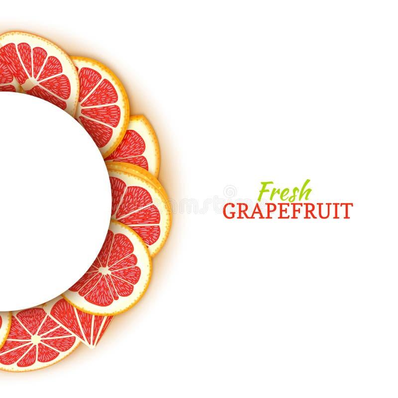 Halve cirkel wit die kader uit heerlijke tropische rode grapefruit wordt samengesteld Vectorkaartillustratie Half-round pompelmoe royalty-vrije illustratie