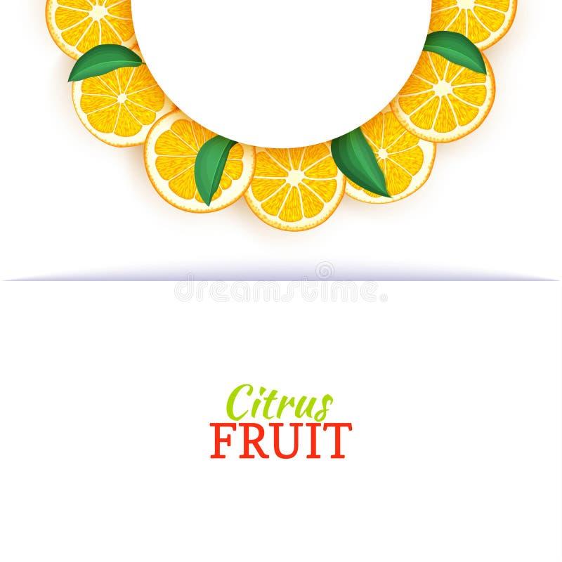Halve cirkel wit die kader uit heerlijke tropische sinaasappelen wordt samengesteld Vectorkaartillustratie Oranje mandarin halve  vector illustratie